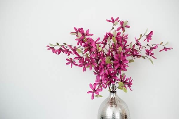 Pinkfarbene Blumen schmücken die Praxis für Lebens- und Liebesglück von Steffi Linke.